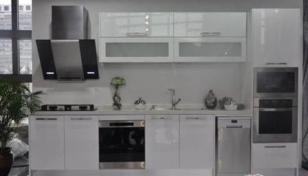 嵌入式厨电一体化指南发布 企业大力推出嵌入式电烤箱