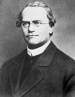 科学史上最伟大的十位单身科学家 世界上最伟大的十大单身科学家