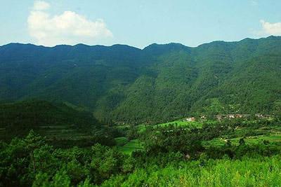 综合搜索   空山国家森林公园位于四川省通江县境内,地处四川盆地东北图片